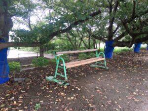 散歩道のベンチ